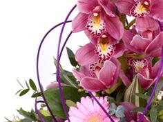 Floraline Flowers
