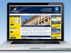 Salloway Website Design & Advertising